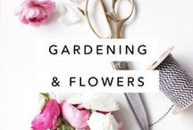 Green Thumb / Gardening tips, tricks, and inspiration with plant info