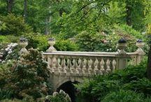 Lovely Gardens / by LuAnn Musano Cantamessa