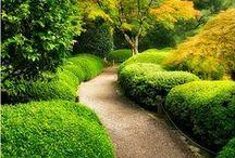 ~ Paths ~