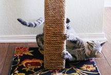 Pyssel DIY for cats