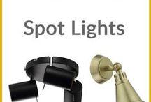In The Spot Light