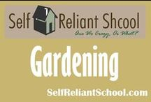 Gardening / How to grow your own food. / by Self Reliant School