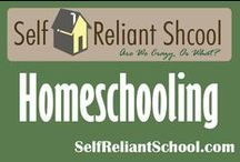 Homeschooling / Ideas, tips, encouragement and information about homeschooling. / by Self Reliant School