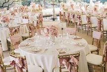 Wedding / Be inspired to create the wedding of your dreams.