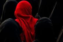 Rojos / by Tere Paez