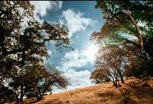 #showusyourbird / Arc'teryx Gear for Surviving in the Blistering Heat / by Arc'teryx
