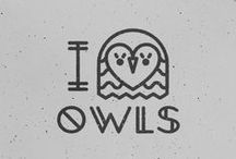 Owl. / Anything Owl - I love them. / by Jessica Nicole