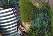 Garden Ideas / by Land8