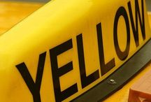 Mellow Yellow / by Gwyn Kesler