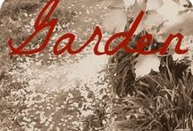 Garden / A love letter to all things dans le jardin.