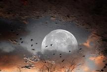 ღ.¸¸.✿❤Luna, lunera... -  Moon ... / by Elisabeth  ღ.¸¸.✿❤