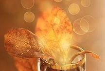 ღ.¸¸.✿❤Dorados y cobrizos - Golden and coppery / by Elisabeth  ღ.¸¸.✿❤