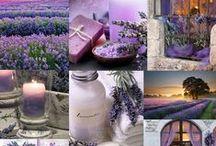 ღ.¸¸.✿❤Collage colors - Silvia Hokke / Descubrí en Facebook una pagina maravillosa que me encantó. Aquí está mi homenaje a Silvia Hokke, la creadora de la mayoría de estos collage.    I found a wonderful page on Facebook which I loved. Here is my tribute to Silvia Hokke, the creator of most of these collage. https://www.facebook.com/pages/Collage-dreams/639188992814078?fref=ts   / by Elisabeth  ღ.¸¸.✿❤