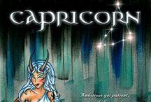 €apricorn* / All about Capricorns :)