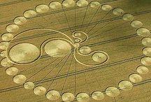 (%) Crop Circles (%)