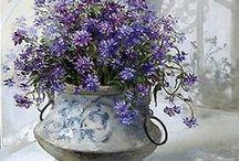 ღ.¸¸.✿❤Blanco y lila - White and purple / by Elisabeth  ღ.¸¸.✿❤