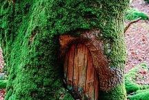 Fairy Tale / by Erin Adams