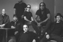 DMB / by Julie Maddock