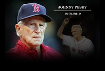Boston Red Sox / I am a huge Boston Red Sox fan, who is fortunately to attend many, many games!