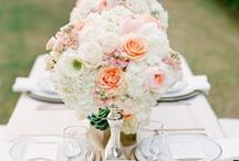 Wedding ideas / by Villa del Paraiso