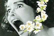 3ssens Zeg'tmetBLOEMen / bloemen wenskaarten met bloemen en boeketten / by Driessens Mieke