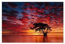 Beautiful Landscape! o.o