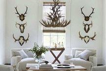 Decor {Living Room} / Living room, dining room, family room, home décor ideas.  Simple, classic, contemporary, rustic.