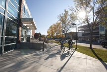 Our Campus / Welcome to Boise State University. Enjoy our boards and pins here on Pinterest.