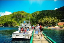 St Lucia Tours - Discover our Beautiful Island / St. Lucia, the Crown Jewel of Caribbean travel, fuses brilliantly with Barefoot Holidays to fulfill a wonderful myriad of dreams and to ensure that you enjoy a hassle free visit to the island.