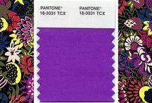 Purple Power / by Jennifer Nicole