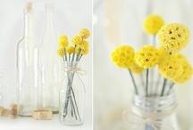 Glass Jar Obsession / by Heather Wyatt