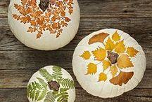Fall! / Fall, September, October, November, Fall recipes, Fall décor, orange, yellow, rustic, pumpkin, squash, apple, cider.