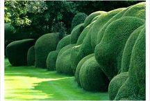 Gardens & Gates