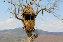 Cabanes perchées/Treehouses