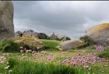 """Goueled Breizh : Penn-Ar-Bed, .... / Penn-Ar-Bed en breton, Finistère en français : en latin « de fine » ou de « finibus terræ » soit : """"de la fin de la terre""""."""
