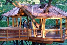 Accessible Treehouses