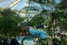 Dream short break at Center Parcs / Ever wonder what a crazy Scomerican family would do on a Center Parc Holiday at Elveden Forest? Well this is how we roll!  #CPFamilyBreaks