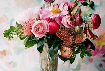 blooms / by jessi faige