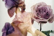 Mixed Media / by Delara Farmanara