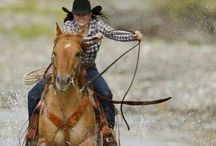 Born in the saddle.
