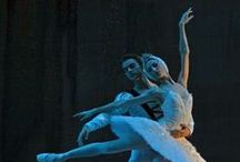 BALLET - SWAN LAKE / all comments by previous pinners  / by Karen Rynearson