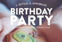Reptiles & Amphibians Party