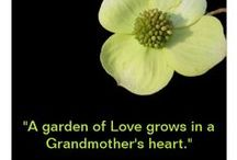 Grandmother's Love / Grandmother's love, memories, stories and good down-home cooking