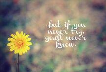 Quotes / by Megan Zarifis