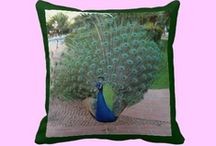 Original Pillows / These Zazzle throw pillows are both functional and beautiful.