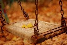 Fall :)  / by Megan Zarifis