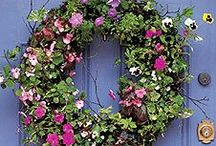 Wreaths  / by Linda Harris