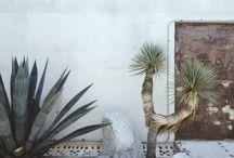 Puno x Elly / Photo shoot  / by Elissa Weishaar
