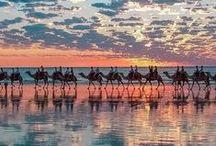 Dream Away / by Seafolly Australia