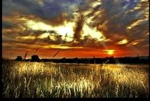 Sunrises & Sunsets / by Gayle Riley Drake